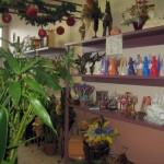 Plantes et décoration